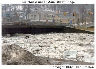 Ice chunks under the Main Street Bridge