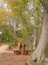 A natural bench located in Mill Pond Park